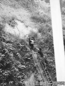 惊险!信宜3岁男童跌落大雾岭附近山崖